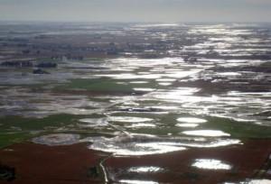 Inundaciones: se suman más distritos a la emergencia agropecuaria