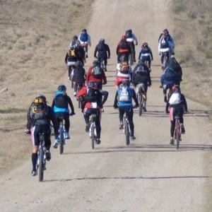 El robo de bicicletas vuelve a sembrar terror en La Plata
