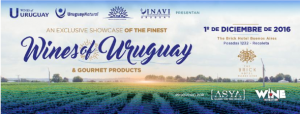 vinos uruguayos