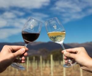 Mendoza apura un acuerdo vitivinícola con San Juan
