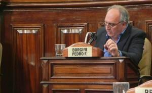 Borgini