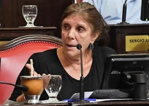 """Senadores peronistas ven """"horizonte de una economía a la baja"""""""