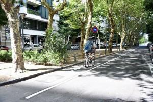 La Plata proyecta sumar más kilómetros de bicisendas y ciclovías