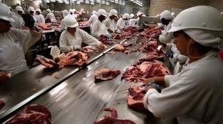 Carne - Precios - Consumo