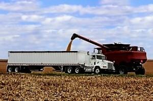 Una buena: exportaciones de aceiteras y cerealeras crecieron 39,17% en abril
